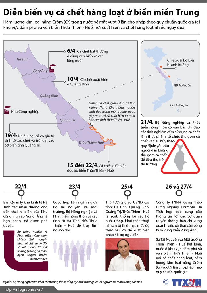 Diễn biến vụ cá chết hàng loạt ở biển miền Trung