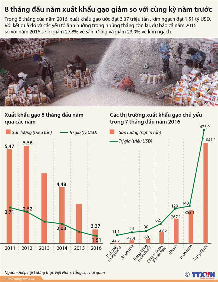 8 tháng đầu năm xuất khẩu gạo giảm so với cùng kỳ năm trước