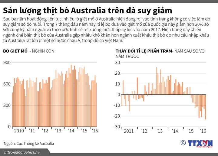 Sản lượng thịt bò Australia trên đà suy giảm