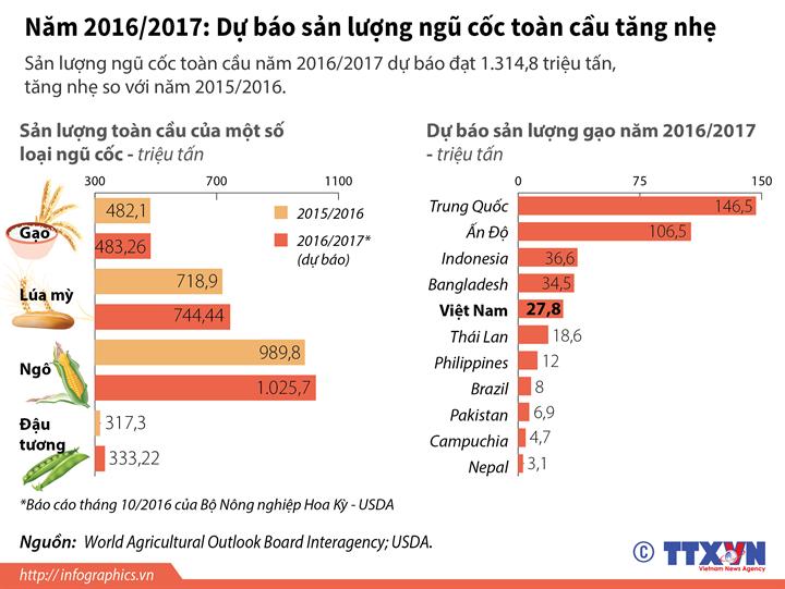 Năm 2016/2017: Dự báo sản lượng ngũ cốc toàn cầu tăng nhẹ