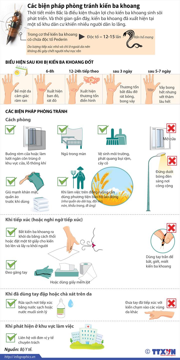 Các biện pháp phòng tránh kiến ba khoang