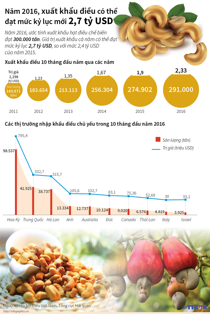 Năm 2016, xuất khẩu điều có thể đạt mức kỷ lục 2,7 tỷ USD