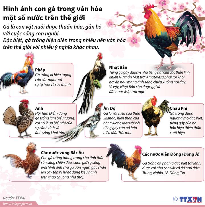 Hình ảnh con gà trong văn hóa một số nước trên thế giới