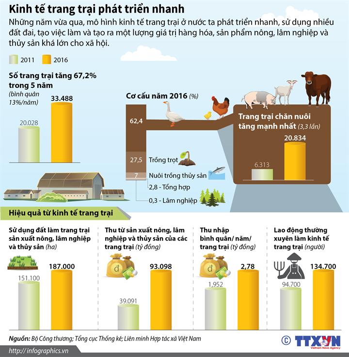 Kinh tế trang trại phát triển nhanh