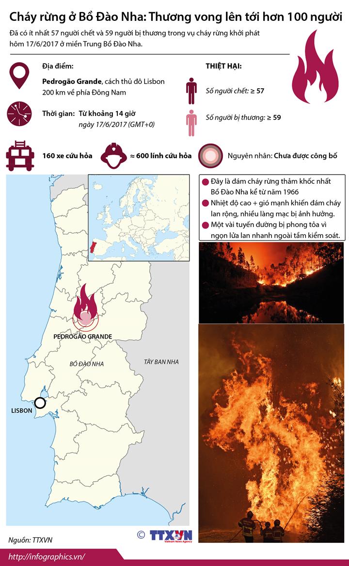 Cháy rừng ở Bồ Đào Nha: Thương vong lên tới hơn 100 người