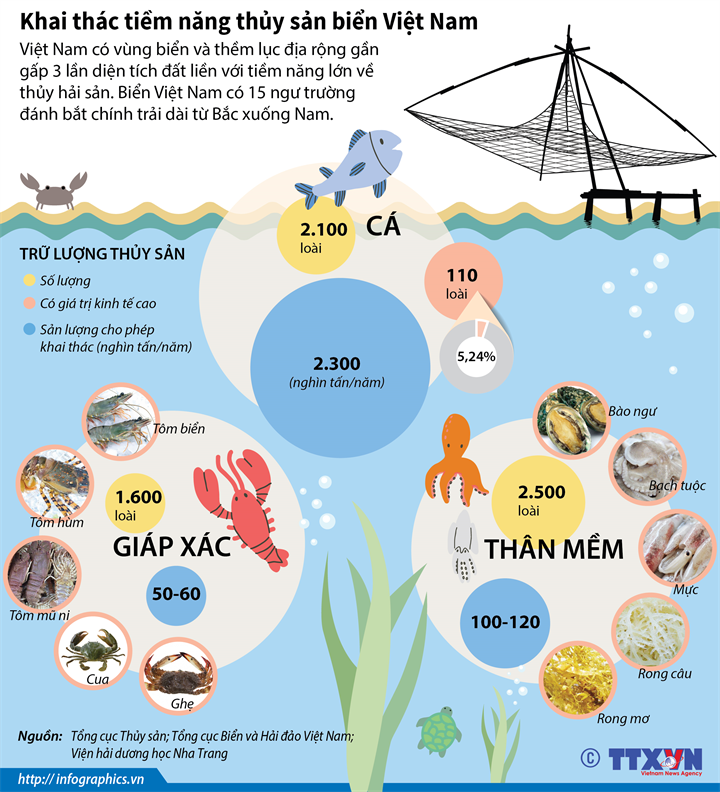 Khai thác tiềm năng thủy sản biển Việt Nam