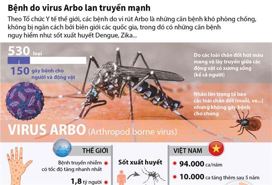 Bệnh do virus Arbo lan truyền mạnh