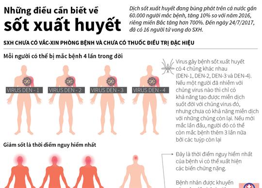 Những điều cần biết về sốt xuất huyết
