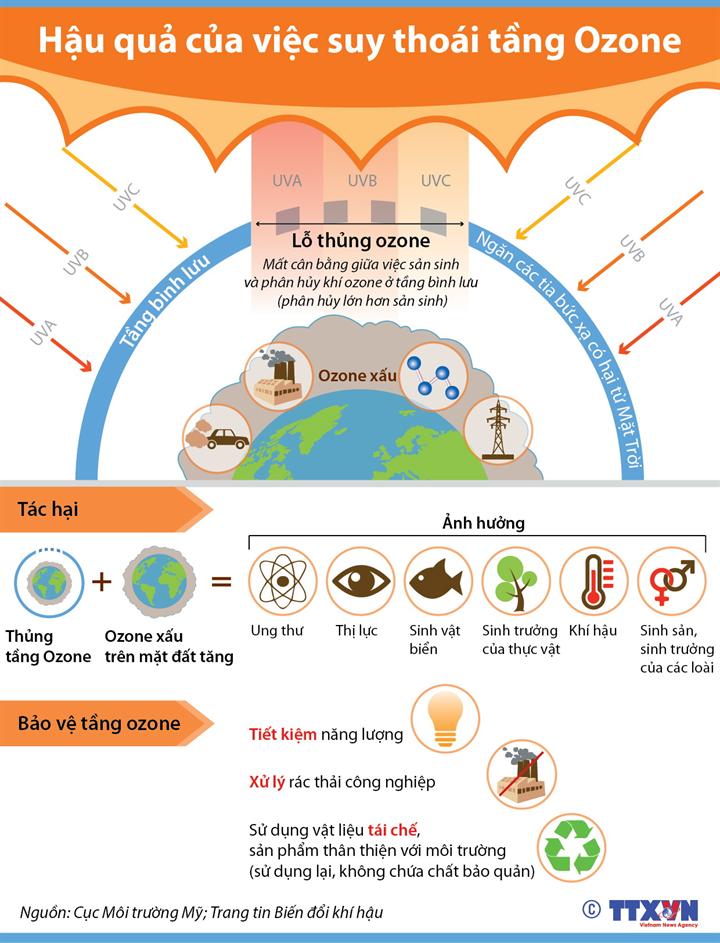 Hậu quả của việc suy thoái tầng Ozone