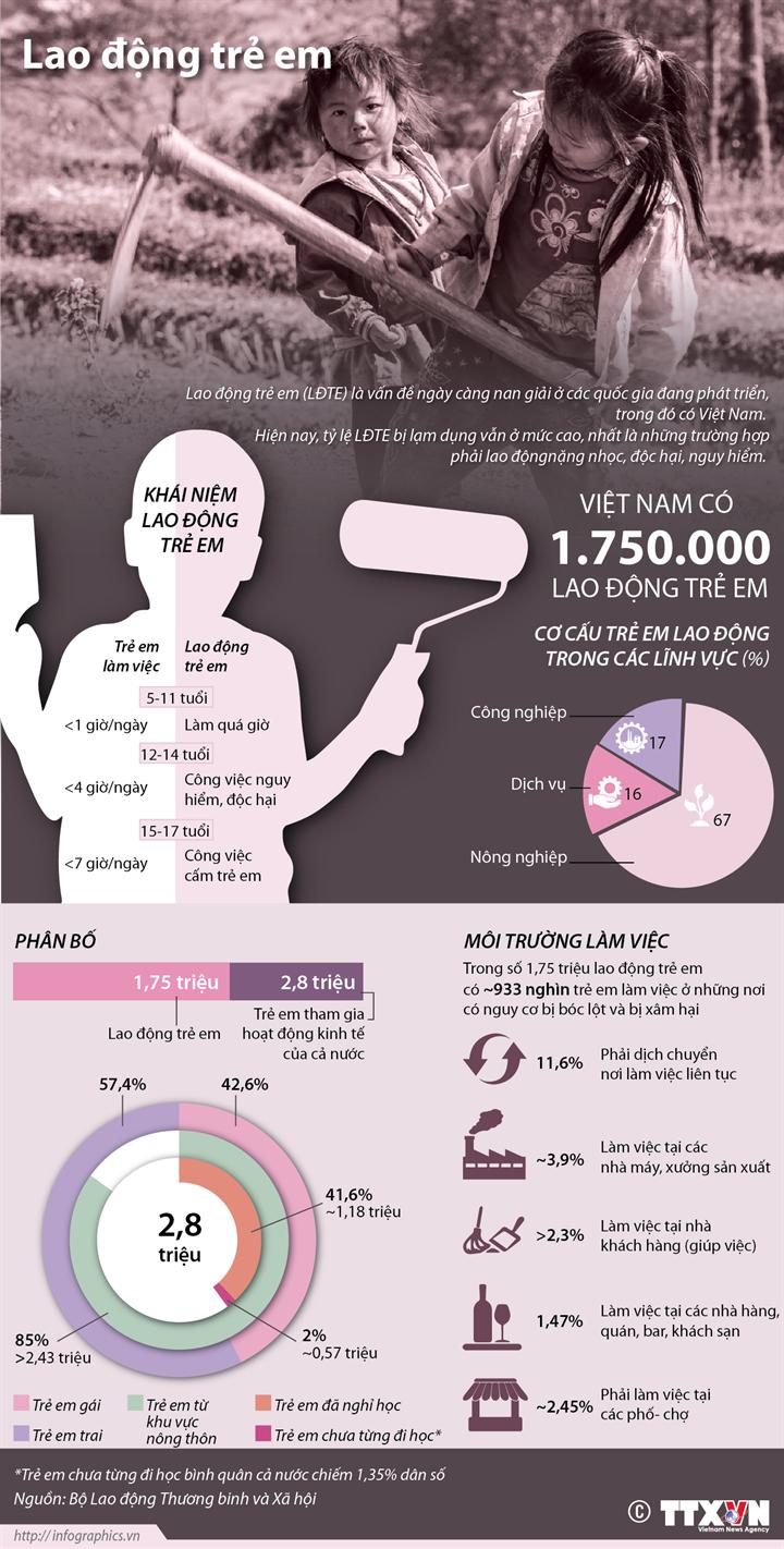 Việt Nam có 1.750.000 lao động trẻ em