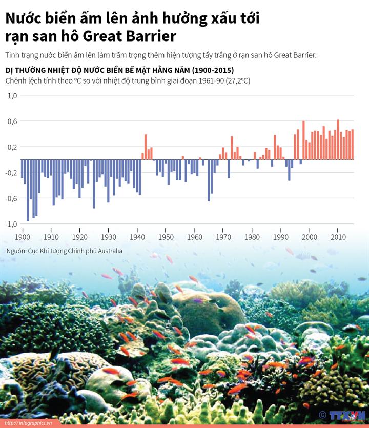 Nước biển ấm lên ảnh hưởng xấu tới rạn san hô Great Barrier
