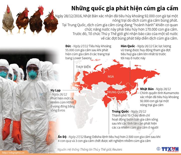 Những quốc gia phát hiện cúm gia cầm