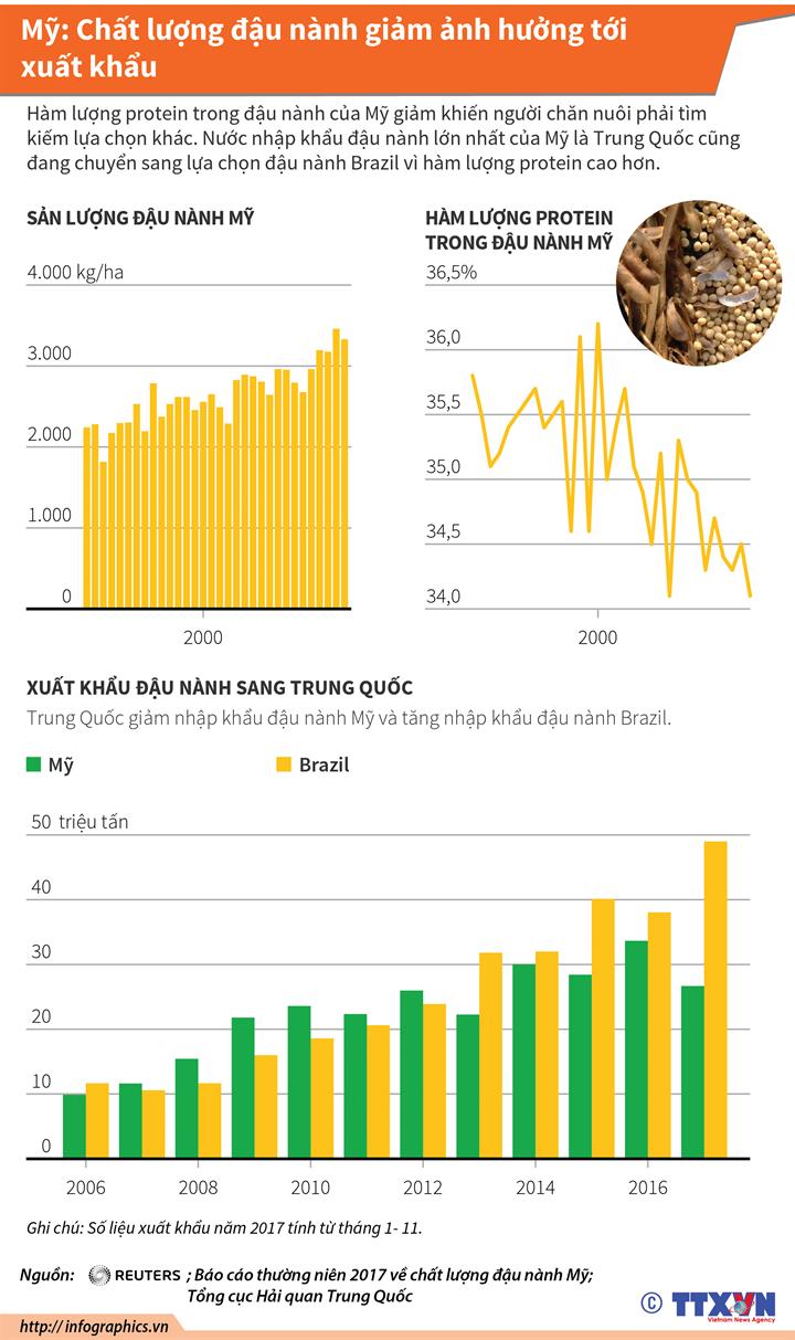 Mỹ: Chất lượng đậu nành giảm ảnh hưởng tới xuất khẩu