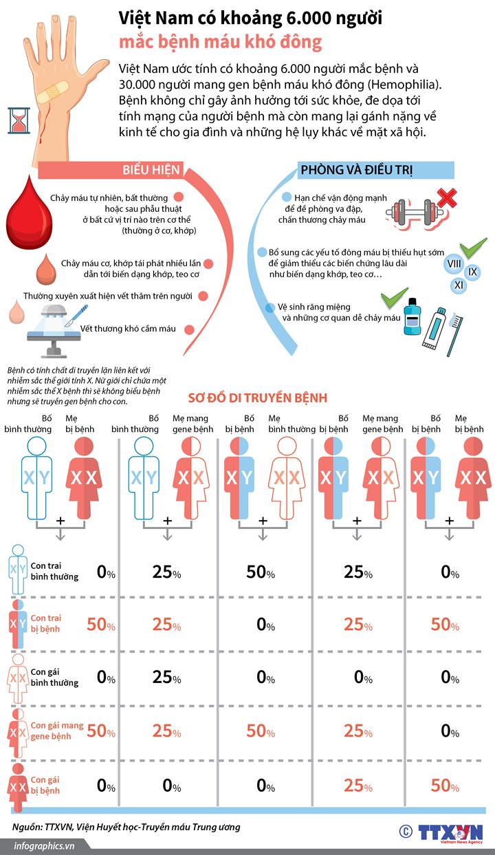 Việt Nam có khoảng 6.000 người mắc bệnh máu khó đông