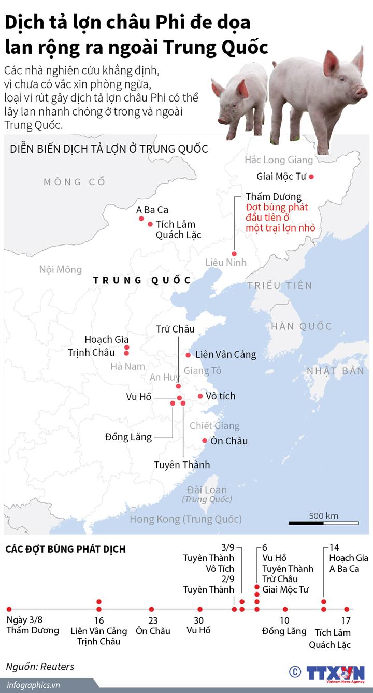 Dịch tả lợn châu Phi đe dọa lan rộng ra ngoài Trung Quốc