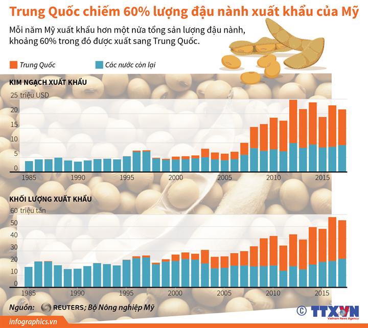 Trung Quốc chiếm 60% lượng đậu nành xuất khẩu của Mỹ