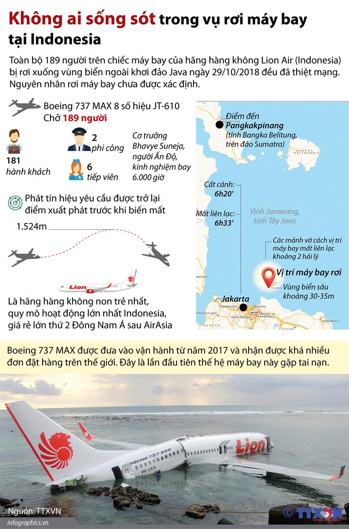 Không ai sống sót trong vụ rơi máy bay tại Indonesia