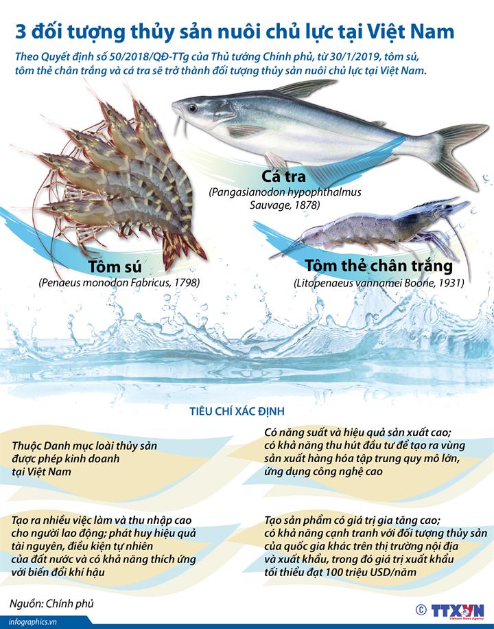 3 đối tượng thủy sản nuôi chủ lực tại Việt Nam
