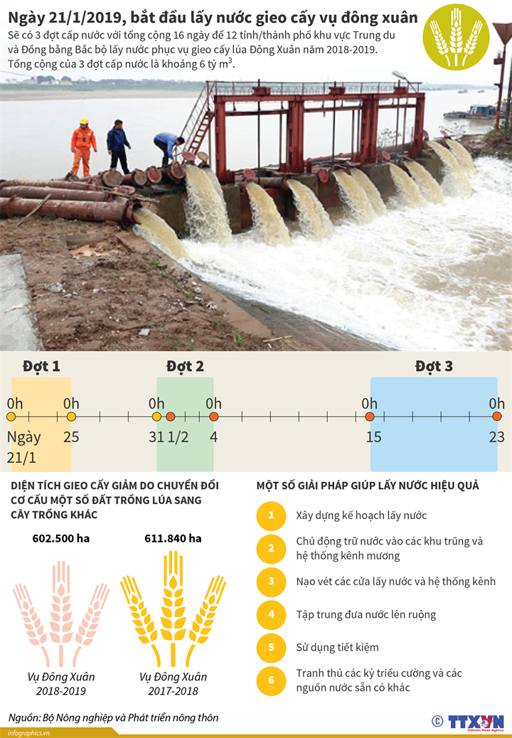 Ngày 21/1/2019, bắt đầu lấy nước gieo cấy vụ đông xuân