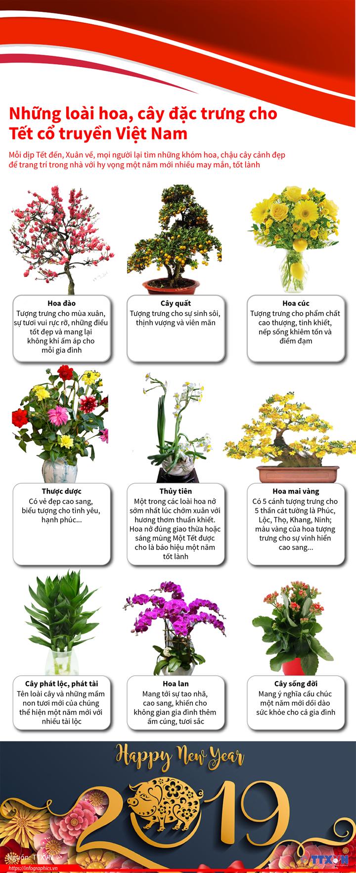Những loài hoa, cây đặc trưng cho Tết cổ truyền Việt Nam