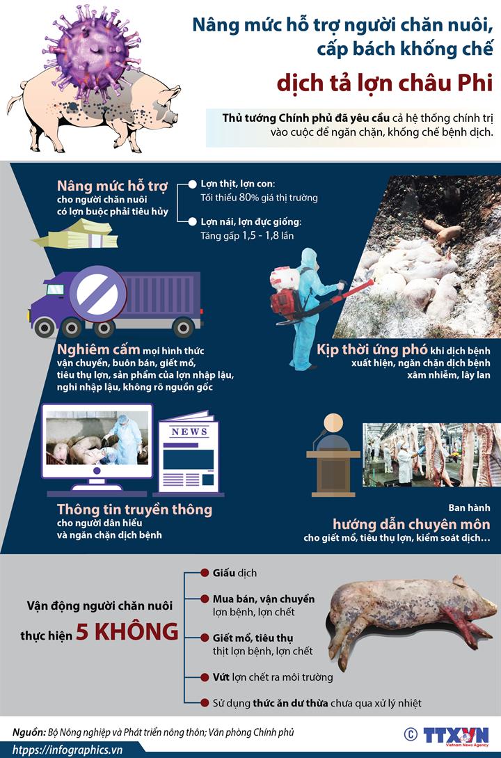 Nâng mức hỗ trợ người chăn nuôi, cấp bách khống chế dịch tả lợn châu Phi