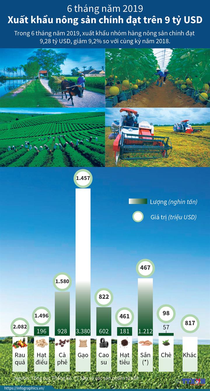 6 tháng năm 2019: Xuất khẩu nông sản chính đạt trên 9 tỷ USD
