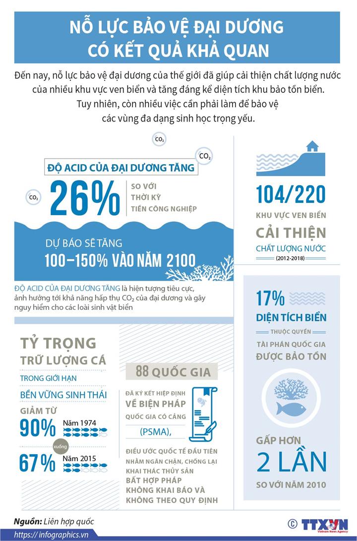 Nỗ lực bảo vệ đại dương có kết quả khả quan