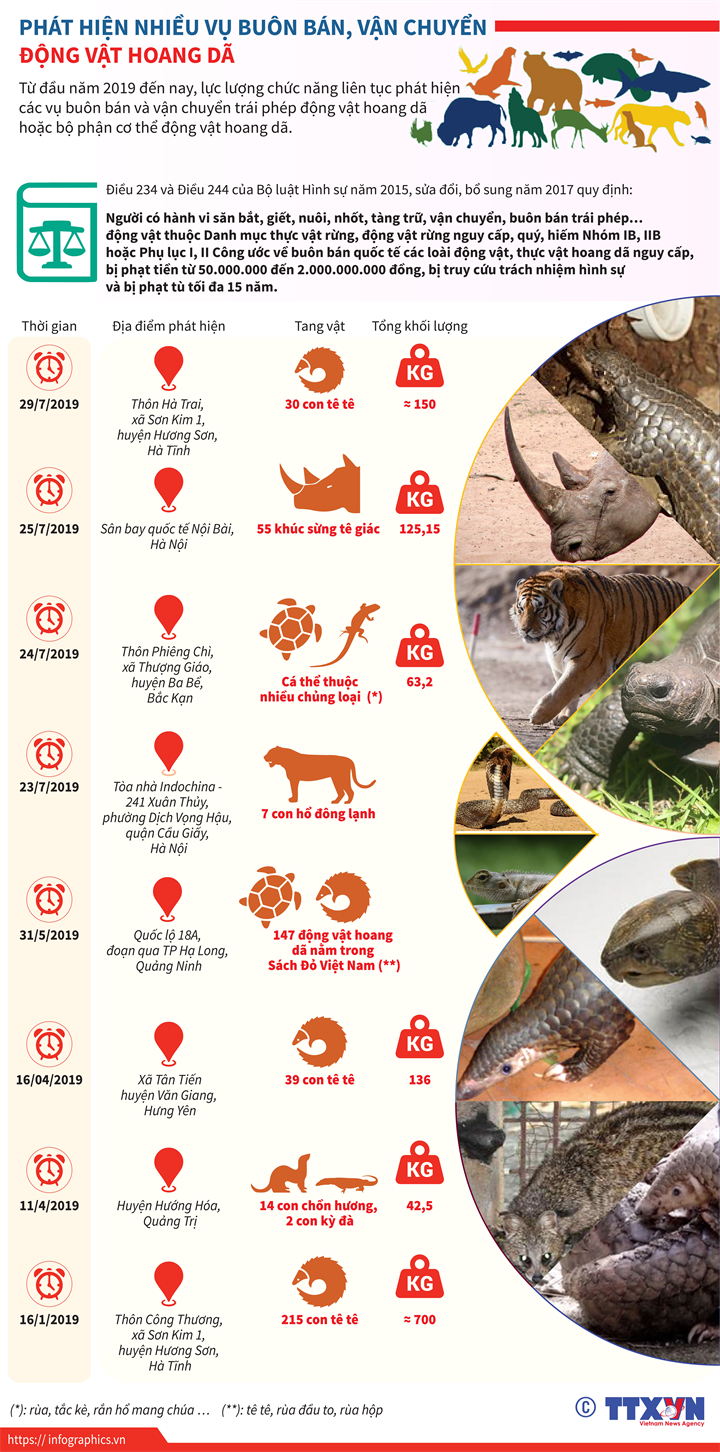 Phát hiện nhiều vụ buôn bán, vận chuyển động vật hoang dã