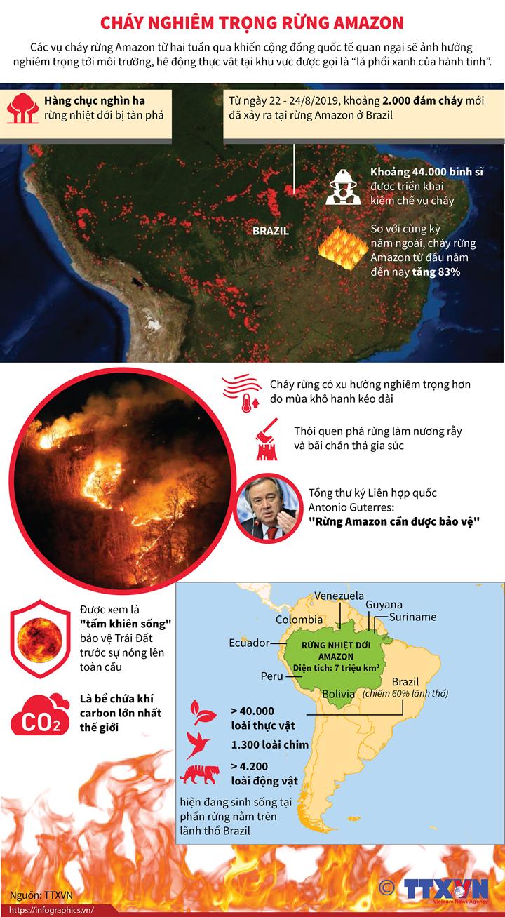 Cháy nghiêm trọng rừng Amazon