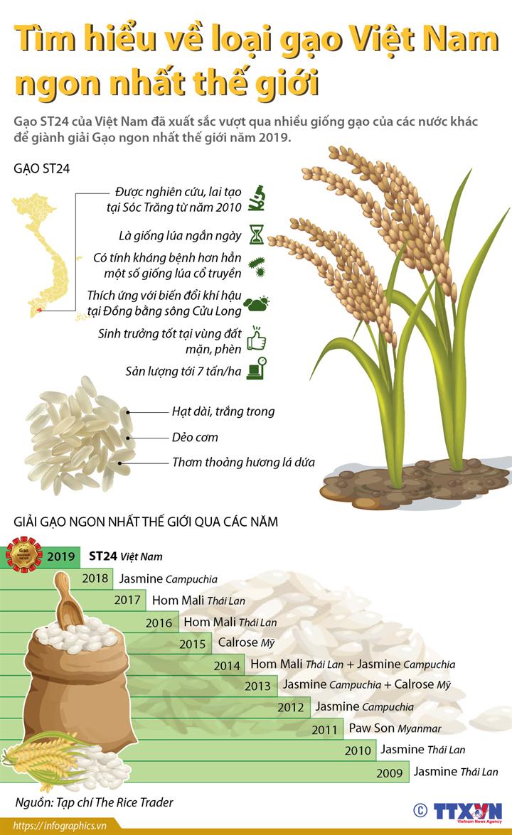 Tìm hiểu về loại gạo Việt Nam ngon nhất thế giới