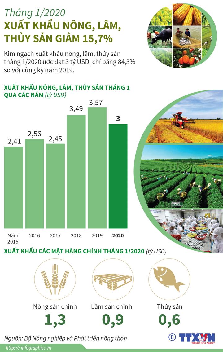 Tháng 1/2020: Xuất khẩu nông, lâm, thủy sản giảm 15,7%