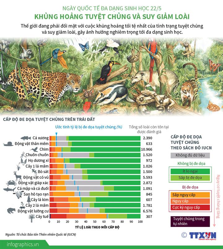 Ngày Quốc tế Đa dạng sinh học 22/5: Khủng hoảng tuyệt chủng và suy giảm loài