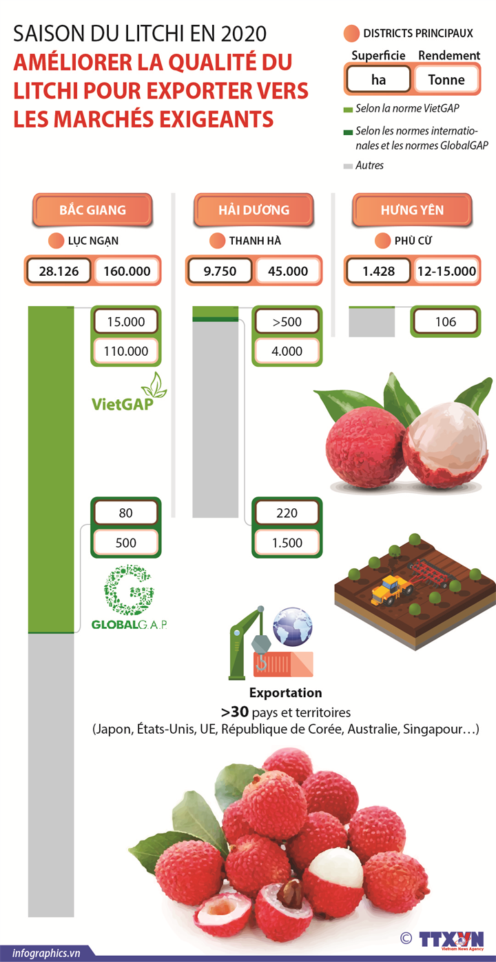 Améliorer la qualité du litchi pour exporter vers les marchés exigeants