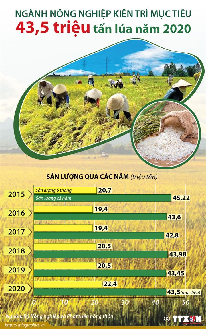 Ngành nông nghiệp kiên trì mục tiêu 43,5 triệu tấn lúa năm 2020