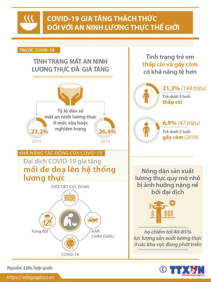 COVID-19 gia tăng thách thức đối với an ninh lương thực thế giới