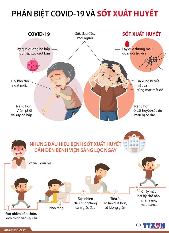 Phân biệt COVID-19 và sốt xuất huyết