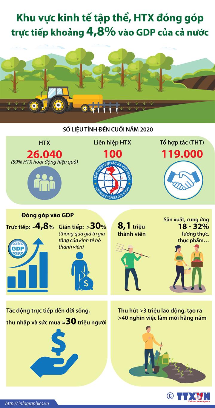 Khu vực kinh tế tập thể, hợp tác xã đóng góp trực tiếp khoảng 4,8% vào GDP của cả nước