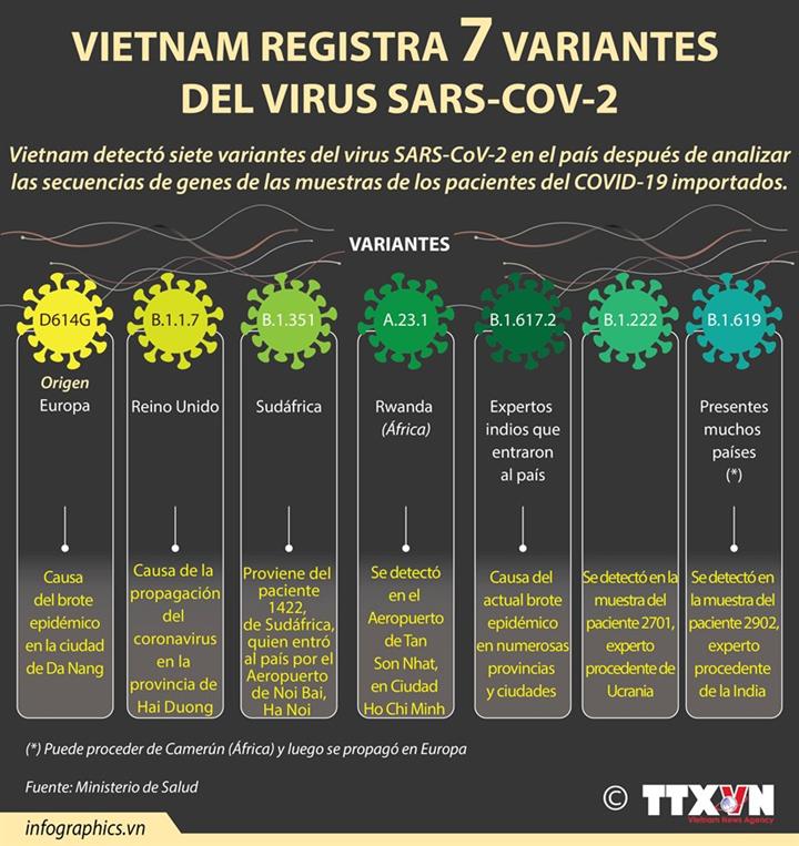 Vietnam registra siete variantes del virus SARS-CoV-2