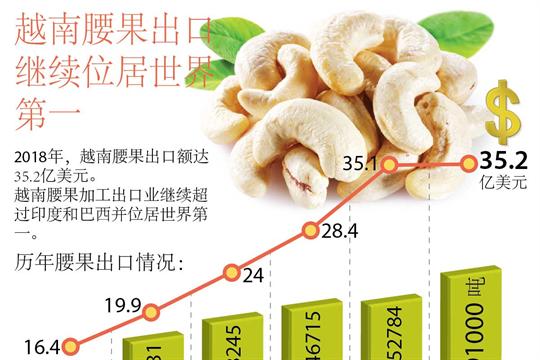 越南腰果出口继续位居世界第一