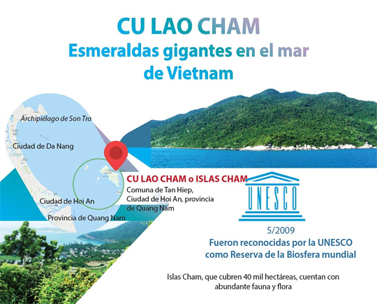 Cu Lao Cham, esmeraldas gigantes en el mar de Vietnam