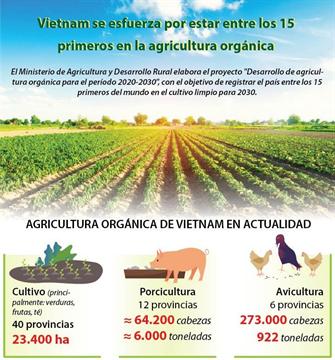 Vietnam se esfuerza por estar entre los 15 primeros en la agricultura orgánica