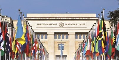 Viet Nam most prominent contributions to UN's activities