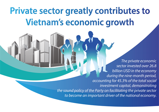 Private sector greatly contributes to Vietnam's economic growth