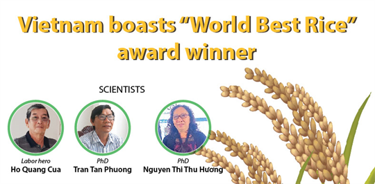 Vietnam's rice variety recognised as best in world