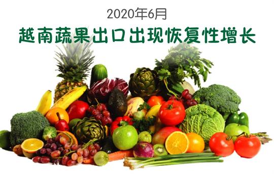 越南蔬果出口出现恢复性增长