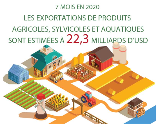 Les exportations de produits agricoles, sylvicoles et aquatiques estimées à 22,3 milliards de dollars en sept mois