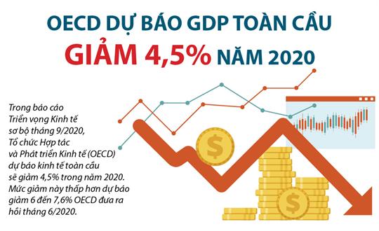 OECD dự báo GDP toàn cầu giảm 4,5% năm 2020