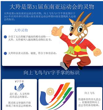 大羚是第31届东南亚运动会的灵物