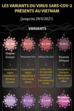 Les huit variants du virus SARS-CoV-2 présents au Vietnam jusqu'au 29 mai