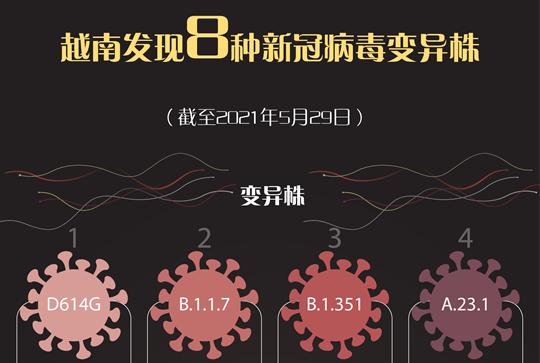 越南发现8种新冠病毒变异株